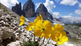 Dolomites 360° |