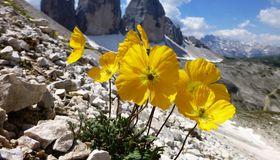 Dolomites 360°