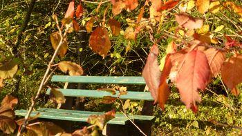 November - Last Minute1