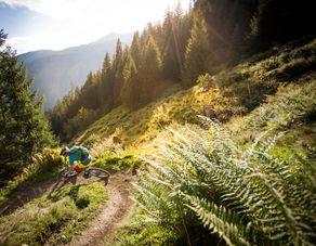 Großes Bikepaket - Die große Berg- und Talfahrt