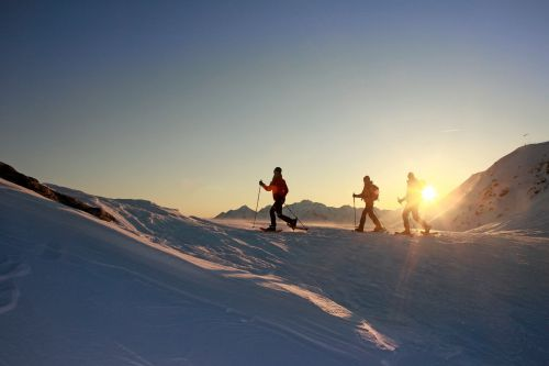 """Snow shoe hikes & wellness"""