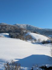 Genießen Sie die winterliche Stimmung im Schwarzwald und gönnen Sie sich eine kulinarische Januar-Auszeit im Kreuz!Schnell sein lohnt sich, das Zimmerkontingentist begrenzt...