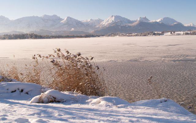 Hopfensee im Winter