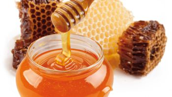 Milch & Honig-Traum Pauschale