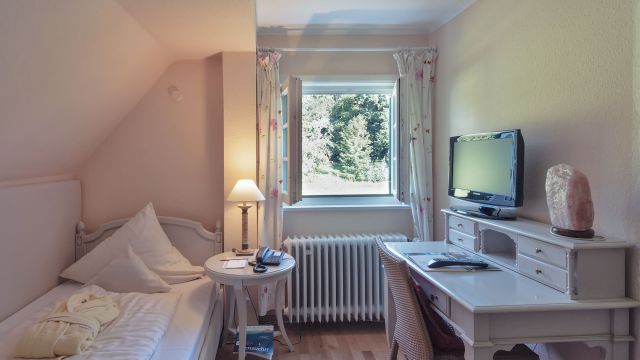 Classic single room small with garden view