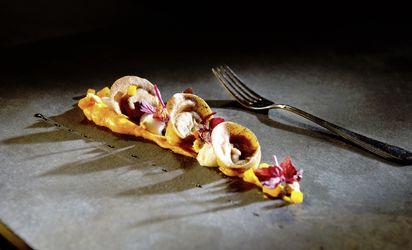Cucina gourmet stellata