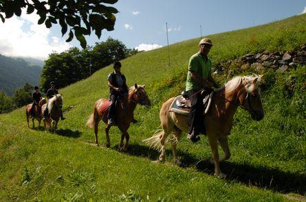 Das Glück der Erde liegt auf dem Rücken der Pferde