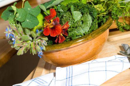 Kräuter-Wellness | 5 Übernachtungen