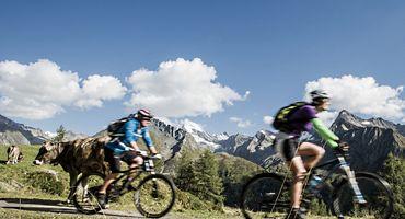 Special Bike Weeks | 04.07. - 08.08.2015 & 29.08. - 04.10.2015