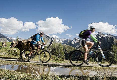 Special-Bike-Wochen | 01.07. - 04.08.2017