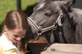 Horse Riding Educational Support