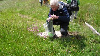 Wildkräuterwanderung Natur und Aktivhotel Rogen Spinges