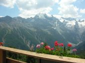 Course week: Hiking around the king Ortler