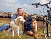 Radurlaub und Radwandern in der Lüneburger Heide