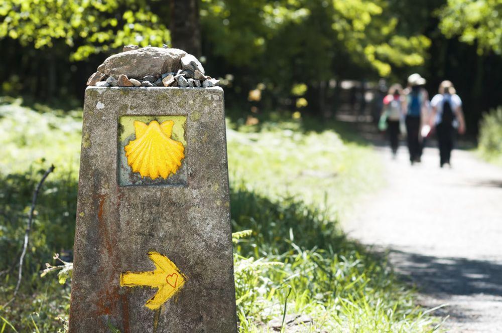 Wandern auf dem Mosel-Camino