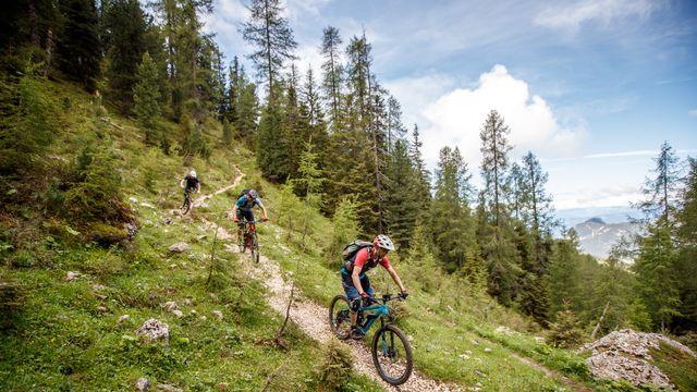 Mountainbike-Singletrail-Woche Sommer